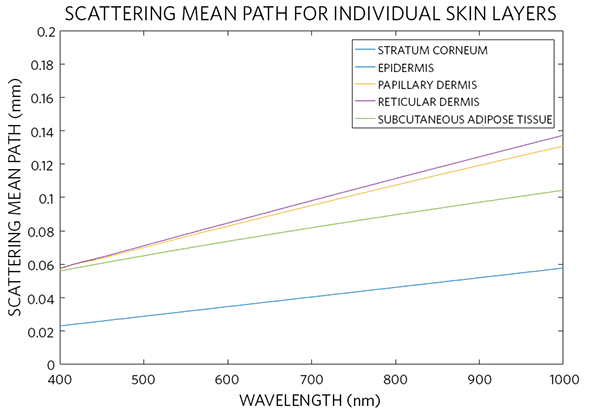 Scattering mean path of different skin layers